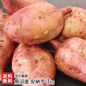 【送料無料】魚沼産 低温熟成さつまいも 安納芋(あんのういも)通常サイズ 3kg 深沢農園 サツマイモ/薩摩芋/焼き芋/のし無料/お祝い/贈り物/お歳暮にも!