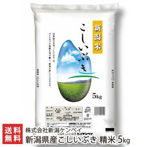 令和元年度新米 新潟産 こしいぶき 精米5kg ケンベイ /のし無料/送料無料|niigata-shop