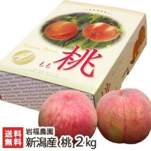 新潟産 完熟桃 2kg 岩福農園/お中元ギフト/のし無料/送料無料|niigata-shop