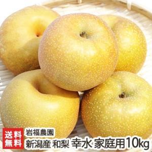 新潟県産 日本梨 家庭用 幸水 10kg(18〜28個位) 岩福農園/送料無料|niigata-shop