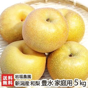 新潟県産 日本梨 家庭用 豊水5kg(8〜14個位) 岩福農園/送料無料|niigata-shop