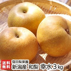 新潟産 窪田梨果園の日本梨 幸水 3kg(6〜10玉)/父の日にも/のし無料/送料無料|niigata-shop
