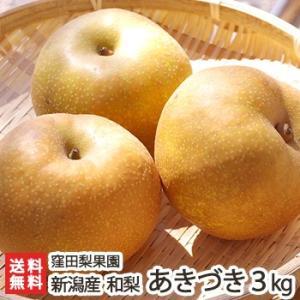 新潟産 窪田梨果園の日本梨 あきづき 3kg(6〜7玉)/父の日にも/のし無料/送料無料|niigata-shop
