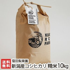 令和元年度米 新潟産コシヒカリ 精米 10kg(5kg×2) 窪田梨果園/父の日にも/のし無料/送料無料|niigata-shop