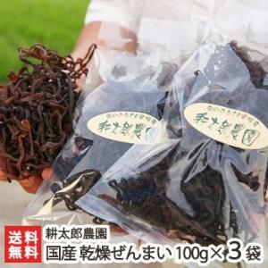 新潟産 天然乾燥ぜんまい 300g(100g×3袋)耕太郎農園/送料無料|niigata-shop