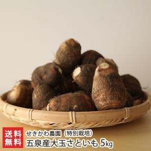 新潟五泉産大玉さといも(特別栽培)5kg せきかわ農園/送料無料 niigata-shop
