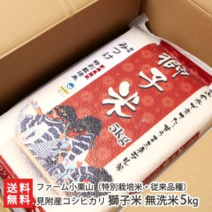 令和2年度米 新潟産 特別栽培米コシヒカリ「獅子米」無洗米5kg(真空パック)ファーム小栗山/ギフトにも/のし無料/送料無料|niigata-shop
