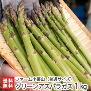 新潟産 グリーンアスパラガス 普通サイズ1kg (1kgあたり30〜60本程度)ファーム小栗山/送料無料