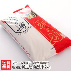 令和2年度米 新潟産 新之助 無洗米2kg(特別栽培米)ファーム小栗山/ギフト プレゼント お祝い 贈り物 のし無料/送料無料|niigata-shop