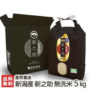 令和2年度米 新潟産 新之助「無洗米」5kg 重野農産/送料無料|niigata-shop