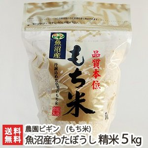 令和元年度新米 魚沼産もち米 わたぼうし 精米5kg 農園ビギン/のし無料/送料無料|niigata-shop