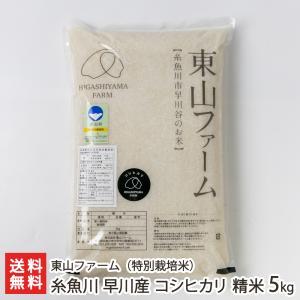 30年度米 新潟 糸魚川早川産 特別栽培米コシヒカリ 精米5kg 東山ファーム/のし無料 送料無料|niigata-shop