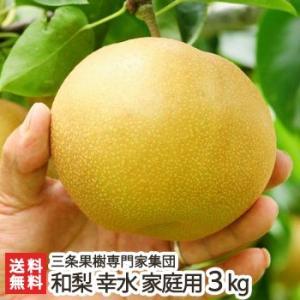 新潟産 日本梨 家庭用 幸水 3kg(6〜9玉)三条果樹専門家集団/送料無料|niigata-shop
