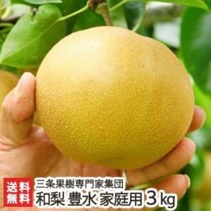 新潟産 日本梨 家庭用 豊水 3kg(6〜9玉)三条果樹専門家集団/送料無料 niigata-shop