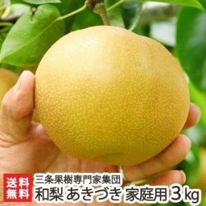 新潟産 日本梨 家庭用 あきづき 3kg(5〜8玉)三条果樹専門家集団/送料無料 niigata-shop