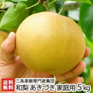 新潟産 日本梨 家庭用 あきづき 5kg(7〜12玉)三条果樹専門家集団/送料無料 niigata-shop