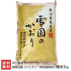 令和3年度新米 南魚沼産 特別栽培米 コシヒカリ 精米5kg 井口農場/のし無料/送料無料|niigata-shop