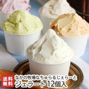 搾りたて生乳のジェラート詰め合わせ 9種12個入 なかの牧場なちゅらるじぇらーと/お中元ギフト/のし無料/送料無料|niigata-shop