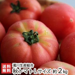 新潟産「にごりかわトマト」秋トマト Lサイズ 約2kg(9〜10玉)濁川生産組合/のし無料/送料無料 niigata-shop