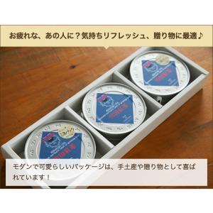 雪国紅茶 ティーパック丸缶 2個入(1缶:3g×6)冨士美園/のし無料/送料無料 niigata-shop 06