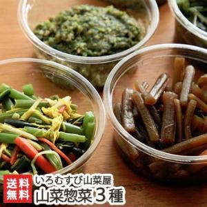 天然山菜惣菜3種 詰め合わせ  いろむすび山菜屋/送料無料|niigata-shop