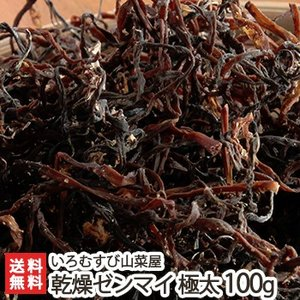 新潟産 天然 乾燥ゼンマイ 極太 100g いろむすび山菜屋/送料無料 niigata-shop