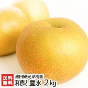 新潟産 日本梨 豊水 2kg(4〜7玉)池田観光果樹園/送料無料|niigata-shop