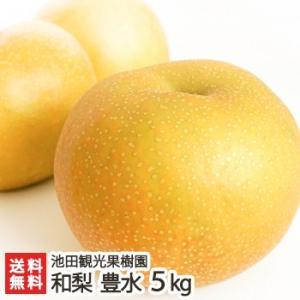 新潟産 日本梨 豊水 5kg(8〜14玉)池田観光果樹園/送料無料|niigata-shop