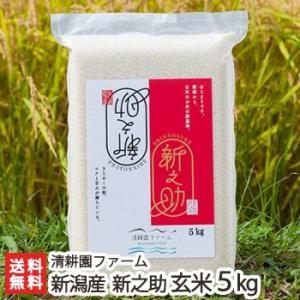 30年度米 新潟 糸魚川産「新之助」玄米 5kg/のし無料/送料無料 niigata-shop