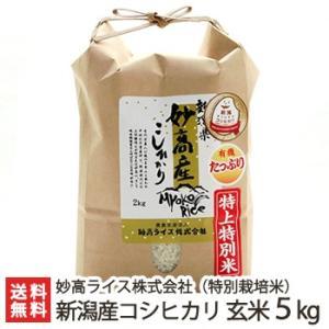 令和2年度米 妙高産 特上特別米コシヒカリ(特別栽培米)玄米5kg 妙高ライス株式会社/新潟産/ギフトにも/のし無料/送料無料|niigata-shop