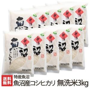魚沼産 コシヒカリ 無洗米 3kg(2合×10) 特産魚沼/ギフト・贈り物・内祝いにも!のし(熨斗)無料/送料無料|niigata-shop