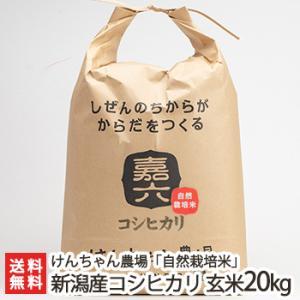 令和元年度新米 新潟県産 自然栽培米 従来品種コシヒカリ 玄米20kg けんちゃん農場/ギフト/のし無料/送料無料 niigata-shop