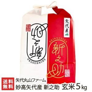 30年度米 妙高矢代産 新之助 玄米5kg 矢代丸山ファーム/のし無料/送料無料|niigata-shop