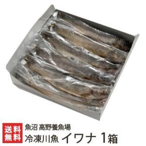 新潟産 冷凍川魚 イワナ 1箱(11尾入り)魚沼 高野養魚場/御歳暮にも!ギフトにも!/のし無料/送料無料|niigata-shop