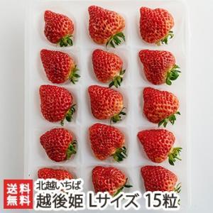 越後姫 Lサイズ 15粒 北越いちば/新潟産ブランド苺/のし(熨斗)無料/送料無料|niigata-shop