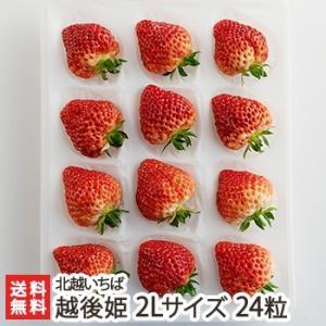 越後姫 2Lサイズ 24粒 北越いちば/新潟産ブランド苺/のし(熨斗)無料/送料無料|niigata-shop