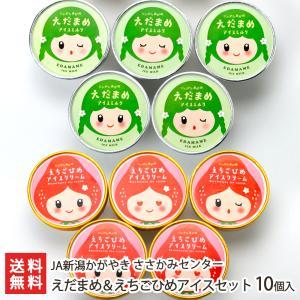 えだまめ&えちごひめアイスセット 10個入(各5個)/JAささかみ/送料無料 niigata-shop