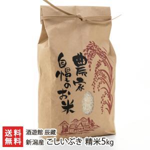 新潟産 こしいぶき 精米5kg 酒遊館 辰藏/のし無料/送料無料|niigata-shop