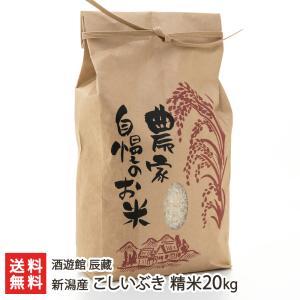 新潟産 こしいぶき 精米20kg(10kg×2)酒遊館 辰藏/のし無料/送料無料|niigata-shop