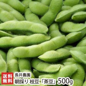 新潟産 朝採り枝豆「茶豆」500g(250g×2袋) 長井農園/ギフト/のし無料/送料無料|niigata-shop