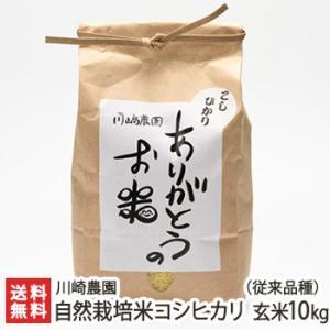 自然栽培米コシヒカリ(従来品種) 玄米10kg 川崎農園/のし無料/送料無料|niigata-shop