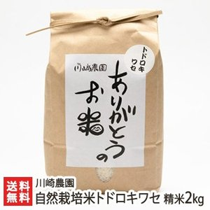 自然栽培米トドロキワセ 精米2kg 川崎農園/のし無料/送料無料|niigata-shop