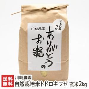 自然栽培米トドロキワセ 玄米2kg 川崎農園/のし無料/送料無料|niigata-shop