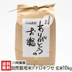 自然栽培米トドロキワセ 玄米10kg 川崎農園/のし無料/送料無料|niigata-shop