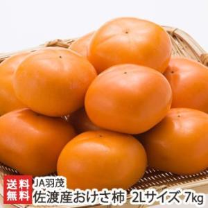 佐渡産 まるは おけさ柿 赤秀 2Lサイズ 約7kg(32玉入り)/JA羽茂/新潟 佐渡ヶ島/送料無料 niigata-shop