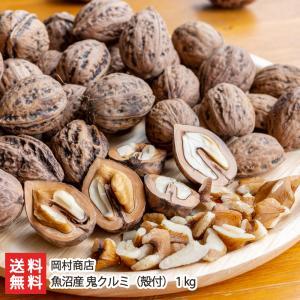魚沼産 鬼クルミ(殻付)1kg/岡村商店/国産/のし無料/送料無料 niigata-shop