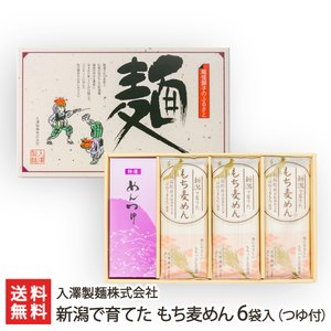 新潟で育てた もち麦めん 6袋入(つゆ付)/入澤製麺株式会社/のし無料/送料無料 niigata-shop