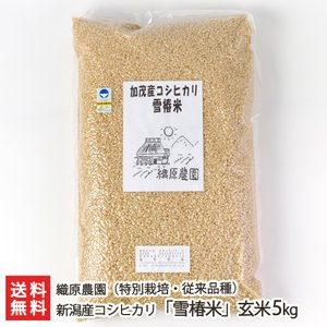 令和3年度米 新潟産コシヒカリ「雪椿米」(特別栽培・従来品種)玄米5kg/織原農園/送料無料 niigata-shop
