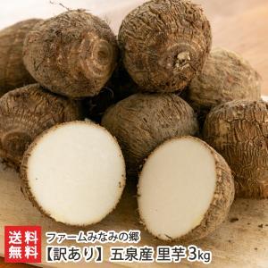 【訳あり】五泉産 里芋 3kg/ファームみなみの郷/送料無料 niigata-shop