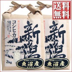 米 新潟県 魚沼産 コシヒカリ 白米 2kg×2袋 送料無料 平成27年度産 こしひかり|niigatameisyuoukoku